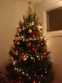 Christmas_tree_022